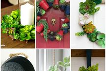 Indoor plants and gardens / Indoor plants, plant decor, greenery, indoor garden tips and inspiration