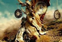 Time Of tree
