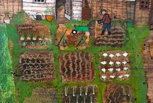 Allotment illustrations