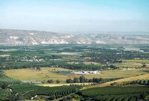 The Galilee, there's no place like home. / Lavido is nestled in the village of Nahalal in the Jezreel Valley, the bread basket of the Galilee region.