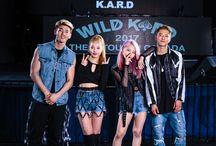 K.A.R.D ~
