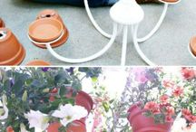 small plant ideas