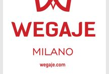 WEGAJE / WEGAJE  Man & Woman Collections