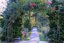 Botanical Destinations