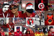 XOLOS / Todos los eventos, documentos, fotos referente al Club Tijuana Xolos