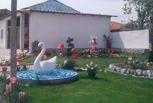 my garden, my paradise!