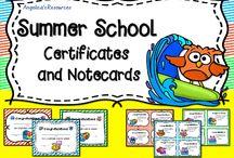 Tutor / Summer School