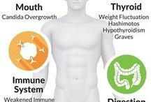 Digestive/Gut