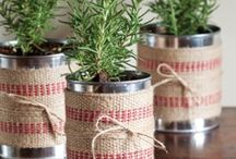 Tin can ideas / Plant in tin cans