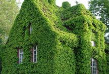 Let the house grow.