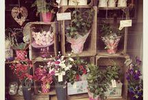 Flower shop windows...
