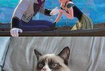 Grumpy cat :* c: