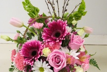 All Occasion Floral Arrangements / Fresh Floral Arrangements for any occasion! / by Dianne's Floral