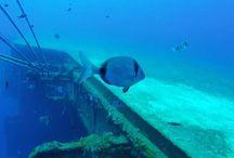 Zenobia Wreck Larnaca Cyprus