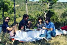 Rioja wine tour / Wine tour in Rioja