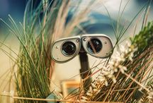 DISNEY : Wall-E