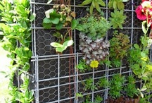 DIY Garden / Do it yourself gardening, designs and practical functionality for a cohesive balance / by Handi Mandi