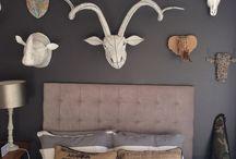 Teens bedroom:  Animal inspired