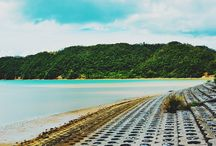 Japan: Okinawa / An assortment of pictures I took in Okinawa, Japan.