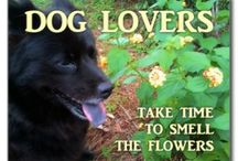 Dogs and Dog Lovers / Dog-related articles and products.