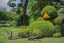 정원 예술