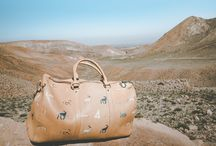 Savanna Bag in the Atacama Desert, Chile