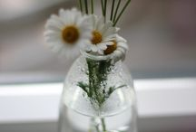 flower in botle