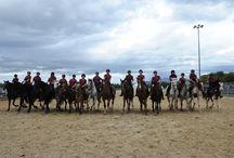 Equitazione salto ostacoli e carosello - Fiera di Sant'Alessandro 2012 / Scuderia ferrari in fiera di sant'alessandro 2012