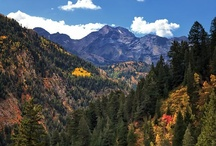 Wasatch Wonders / Wasatch Mountain Range and surrounding environs. / by Cheri Daniels