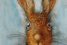 Rabbits and more rabbits
