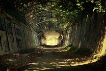 Abandoned Sydney
