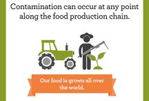 Food Safety / Food Safety - Infographic, Video