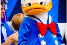 Love that duck !!! And the goof ! / All things Donald !