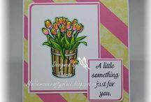 TPD Tulip Bucket Bouquet