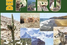 Alertas Bibliográficas de Ingeniería Ambiental / Facultad de Ciencias Ambientales