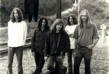 Lynyrd Skynyrd... like a free bird ! / The best southern rock band ever !