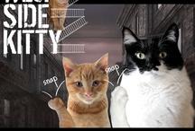 GLOGIRLY Cat Blog Fun / Our favorite photos, graphics & kitty fun from the award-winning cat blog, GLOGIRLY.com.