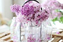 kodikkuutta kukkasilla