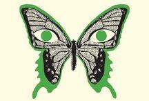 Des Papillon, All Butterflies,                     Schmetterlinge im Bauch