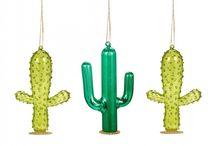 glass cactus