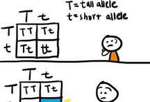 {Teaching Biology}