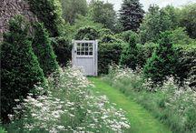 Garden & Landsape