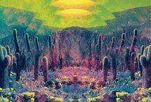 Mystical Moments / by Squatting Bush