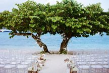 Weddings and Events