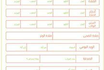التنظيم بالعربي