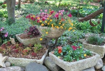 использование гипертуфа в саду