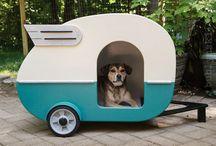 Doggy house / by mathew Jeon