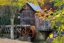 Carolina & Other Gristmills / by Petrina Moretz