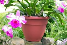 Patio & Deck Planters / Container gardening allows you to garden anywhere - patio, deck, balcony.  Decorative planters are a great way to always keep your garden close by.