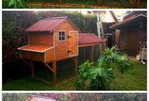 domek pro slepičky / chicken house